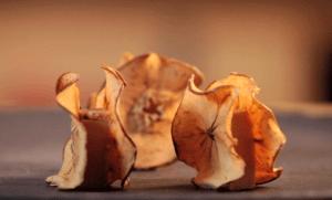 Chips-de-pomme-fruit-au-Foie-Gras