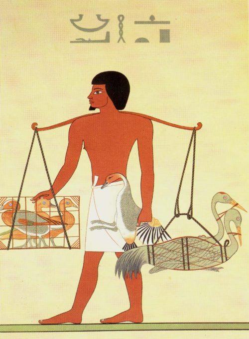 Égypte : Les origines du Foie Gras dévoilées il y a plus de 4500 ans !
